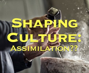Shaping Culture Assimilation