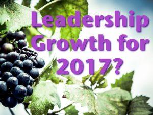 leadershipgrowth2017